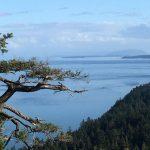 Georgia Strait View